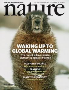 nature_marmot_kapak